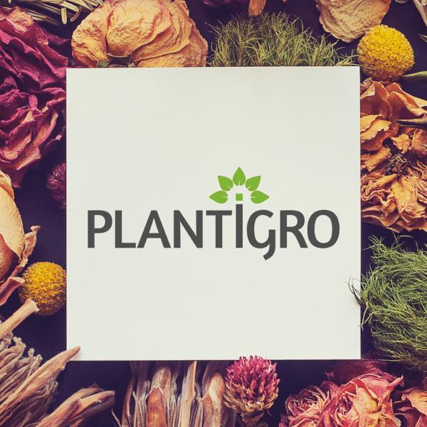 Plantigro